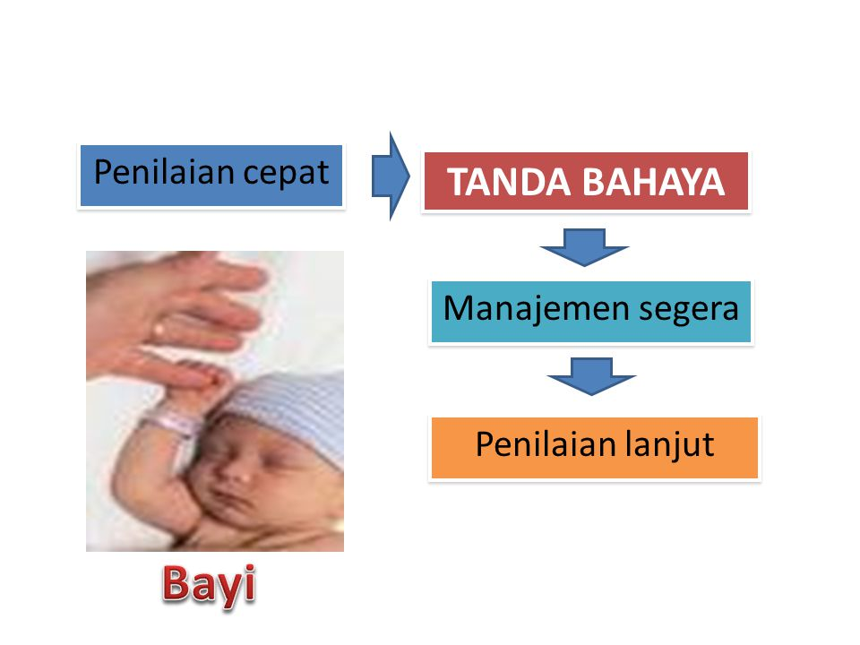 Penilaian cepat TANDA BAHAYA Manajemen segera Penilaian lanjut Bayi