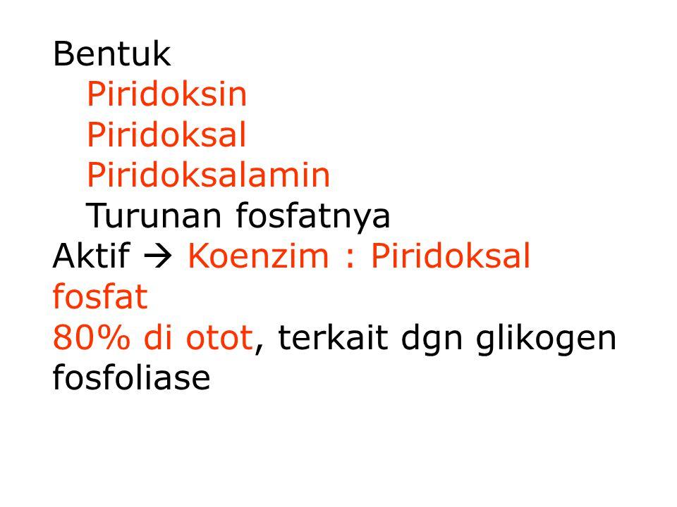 Bentuk Piridoksin. Piridoksal. Piridoksalamin. Turunan fosfatnya. Aktif  Koenzim : Piridoksal fosfat.