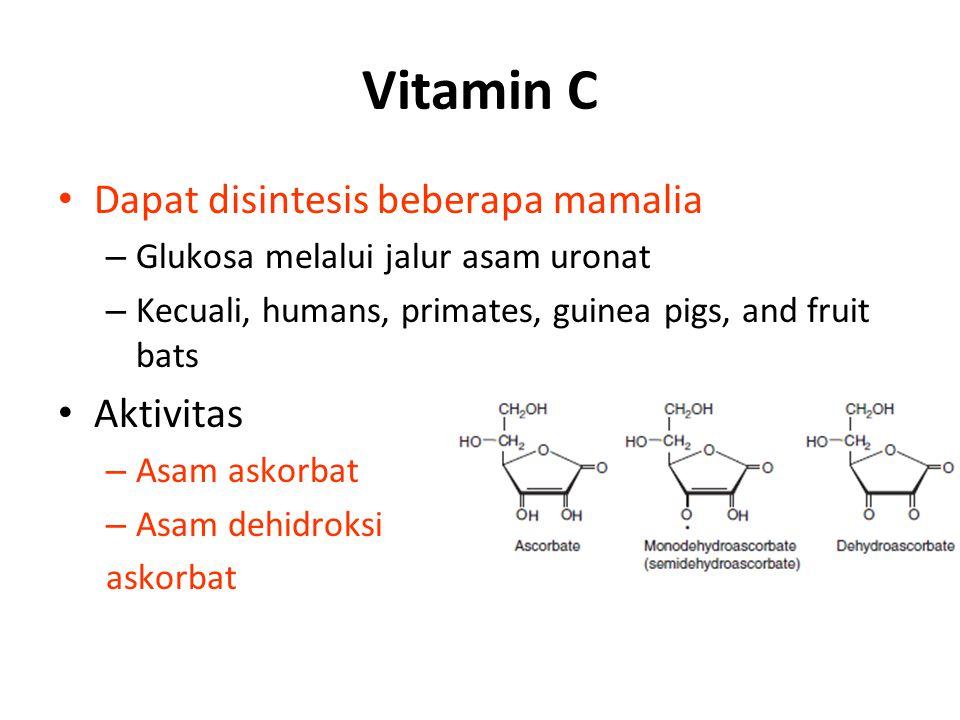 Vitamin C Dapat disintesis beberapa mamalia Aktivitas