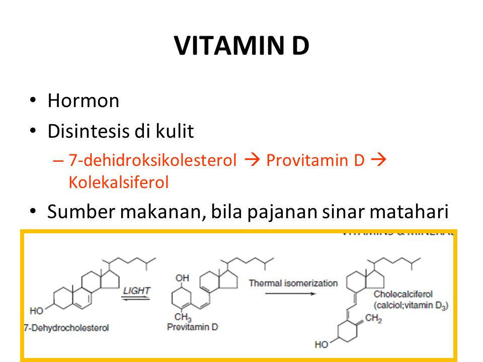 VITAMIN D Hormon Disintesis di kulit