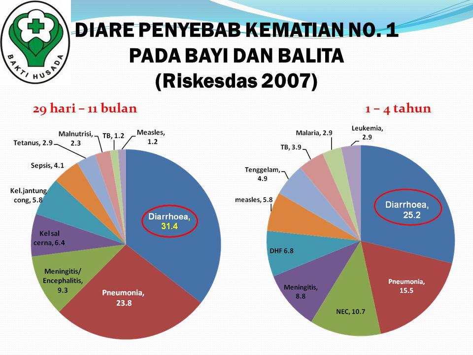 DIARE PENYEBAB KEMATIAN NO. 1 PADA BAYI DAN BALITA (Riskesdas 2007)