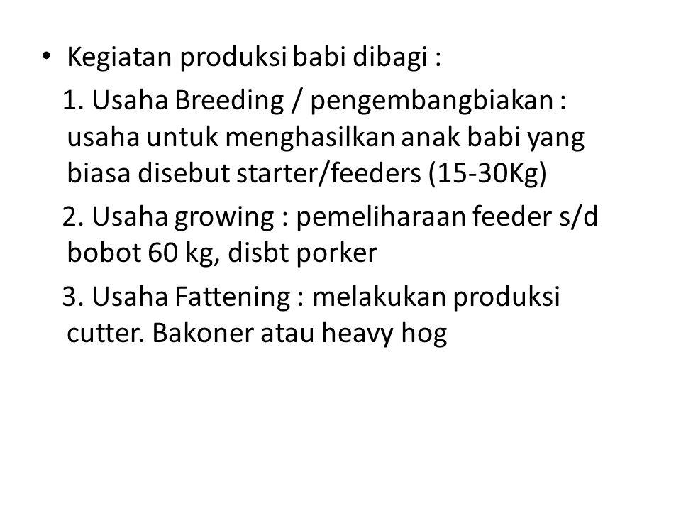 Kegiatan produksi babi dibagi :