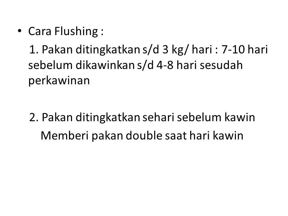 Cara Flushing : 1. Pakan ditingkatkan s/d 3 kg/ hari : 7-10 hari sebelum dikawinkan s/d 4-8 hari sesudah perkawinan.