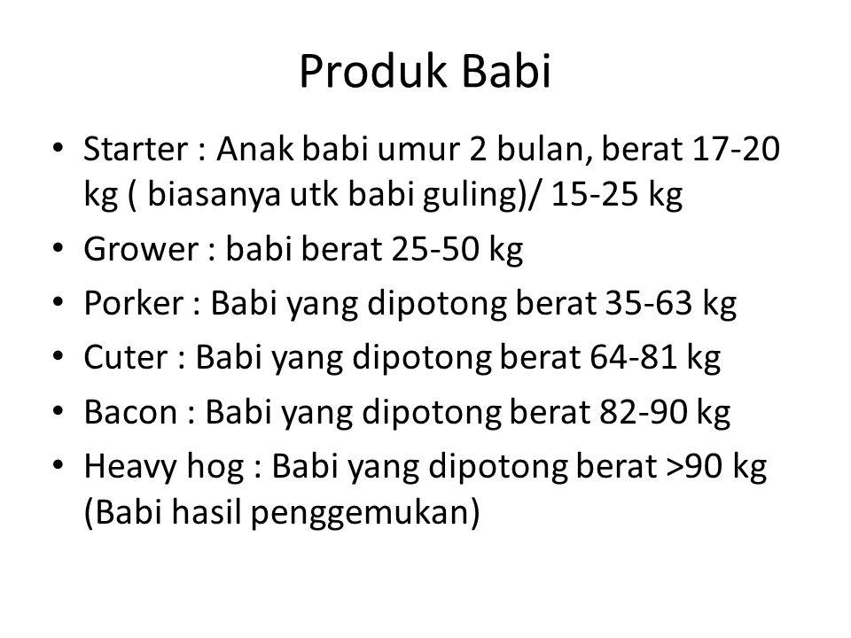 Produk Babi Starter : Anak babi umur 2 bulan, berat 17-20 kg ( biasanya utk babi guling)/ 15-25 kg.