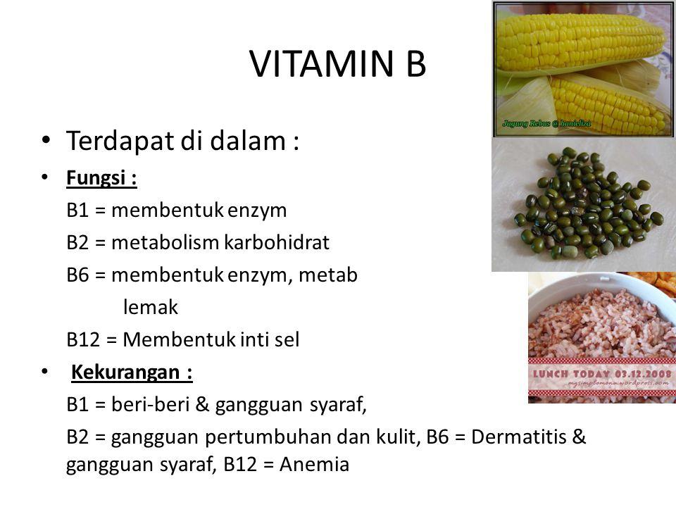 VITAMIN B Terdapat di dalam : Fungsi : B1 = membentuk enzym
