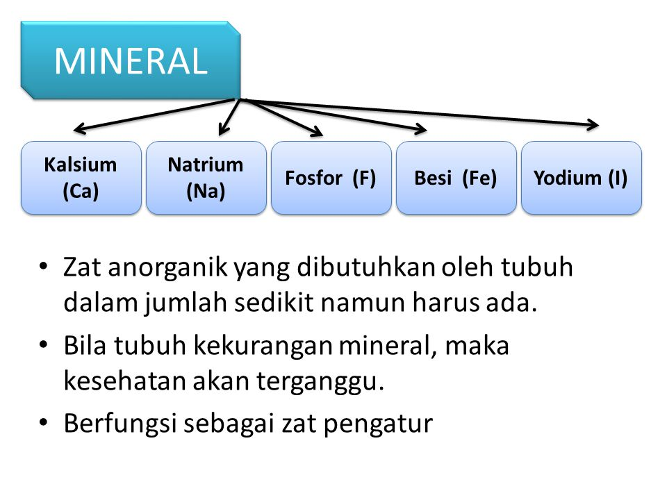 MINERAL Kalsium (Ca) Natrium (Na) Fosfor (F) Besi (Fe) Yodium (I)