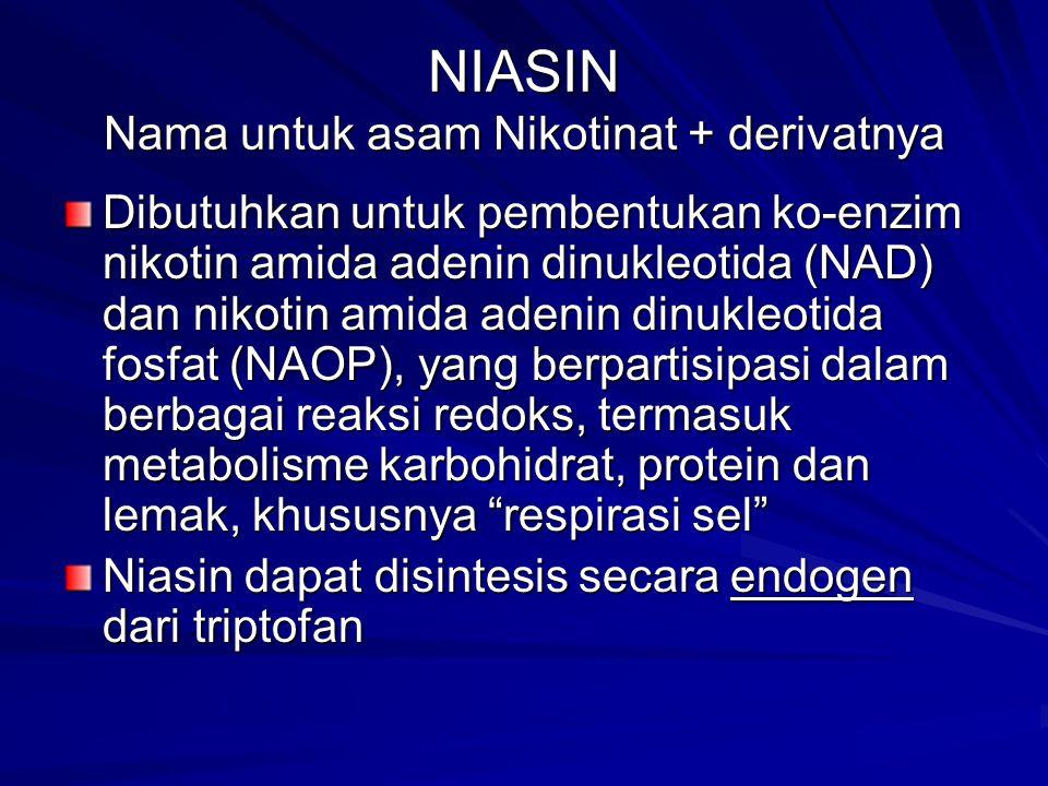 NIASIN Nama untuk asam Nikotinat + derivatnya