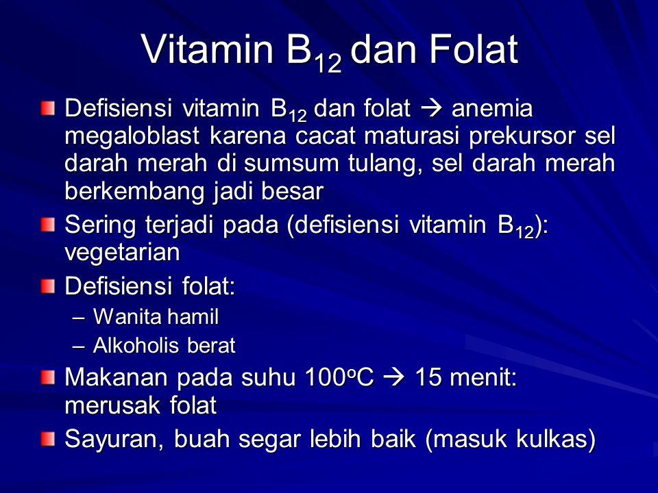 Vitamin B12 dan Folat