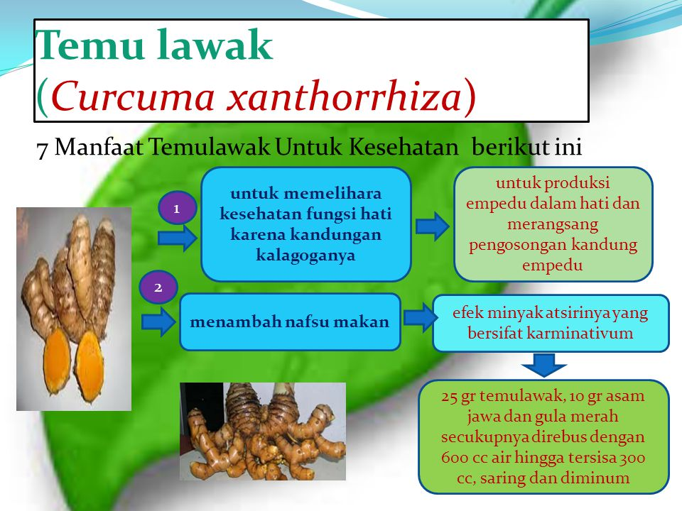 Temu lawak (Curcuma xanthorrhiza)