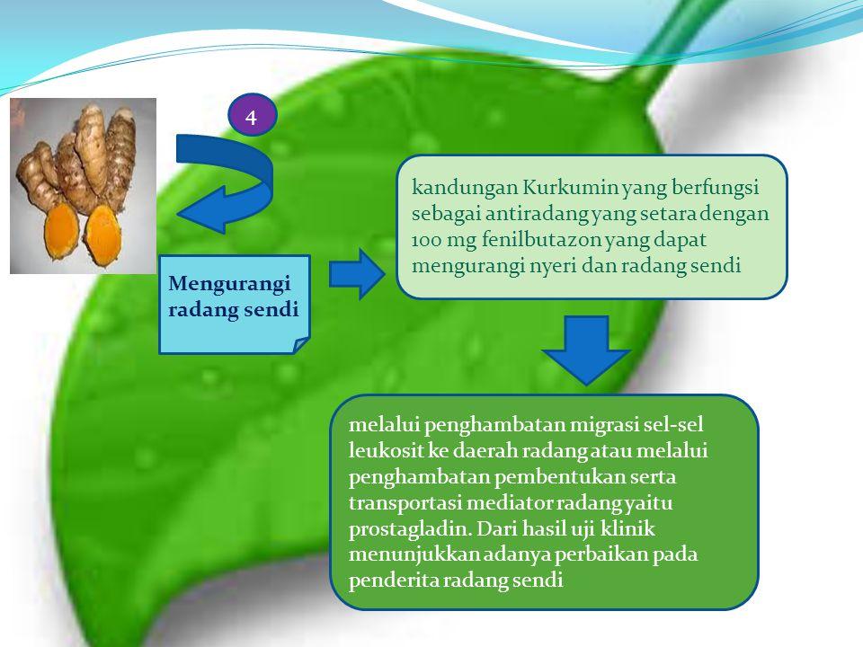 4 kandungan Kurkumin yang berfungsi sebagai antiradang yang setara dengan 100 mg fenilbutazon yang dapat mengurangi nyeri dan radang sendi.