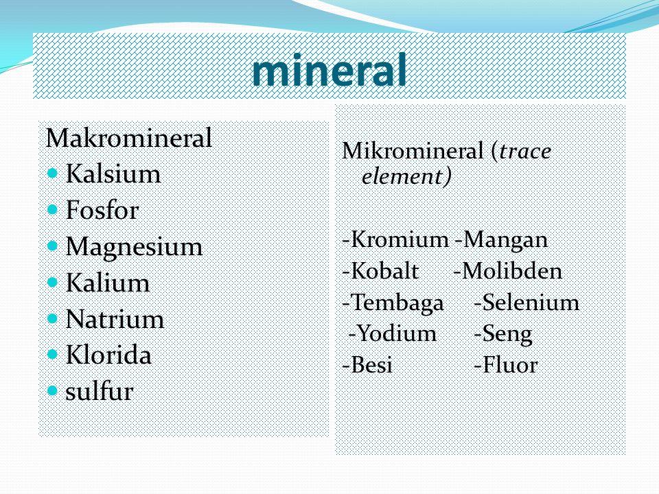 mineral Makromineral Kalsium Fosfor Magnesium Kalium Natrium Klorida