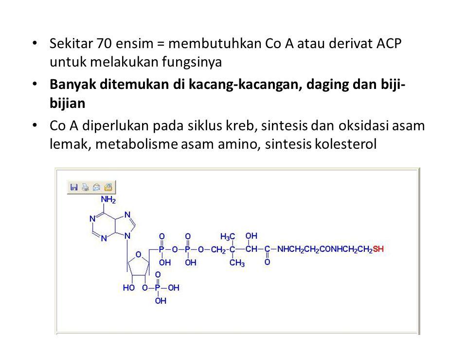 Sekitar 70 ensim = membutuhkan Co A atau derivat ACP untuk melakukan fungsinya