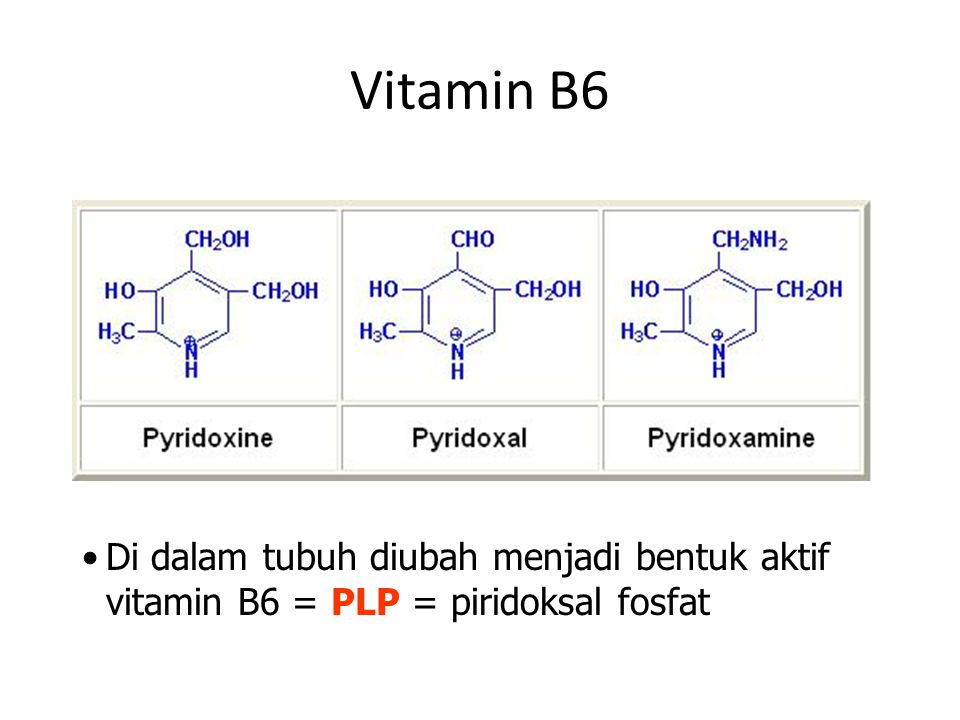 Vitamin B6 Di dalam tubuh diubah menjadi bentuk aktif vitamin B6 = PLP = piridoksal fosfat