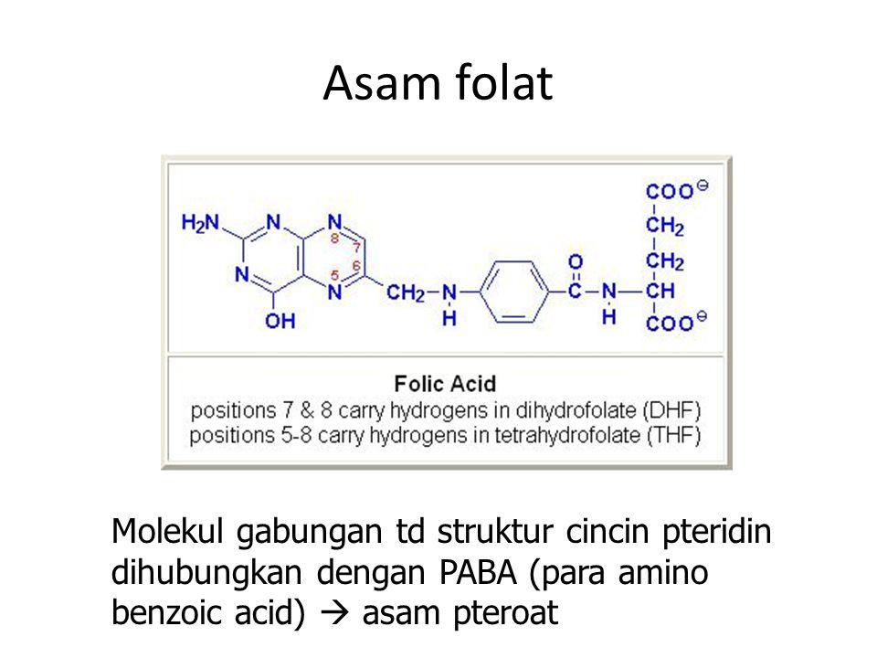 Asam folat Molekul gabungan td struktur cincin pteridin dihubungkan dengan PABA (para amino benzoic acid)  asam pteroat.