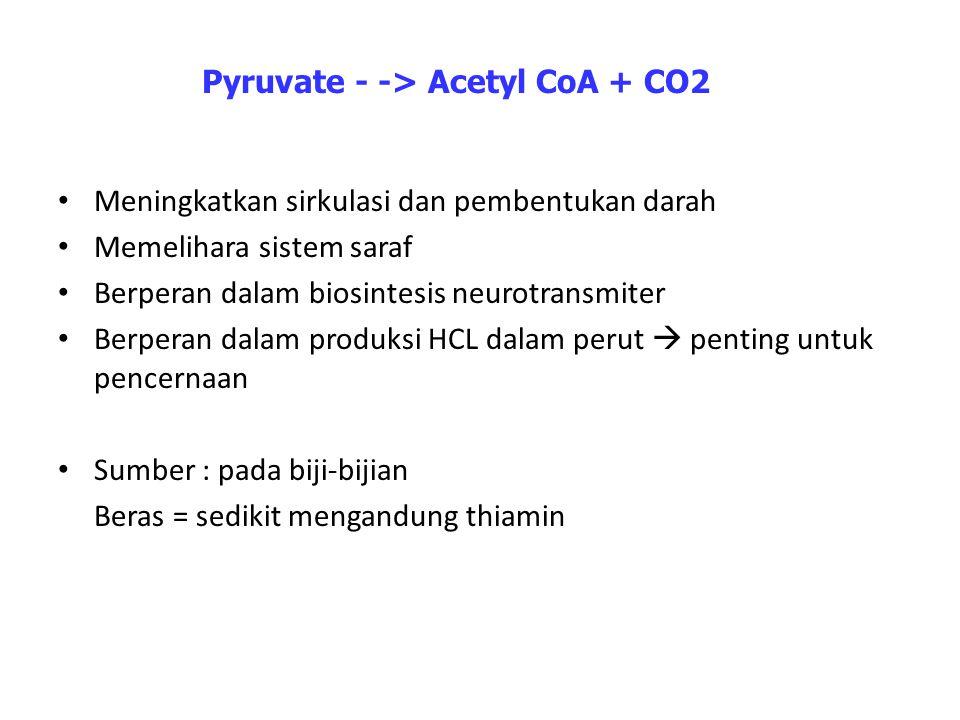Pyruvate - -> Acetyl CoA + CO2