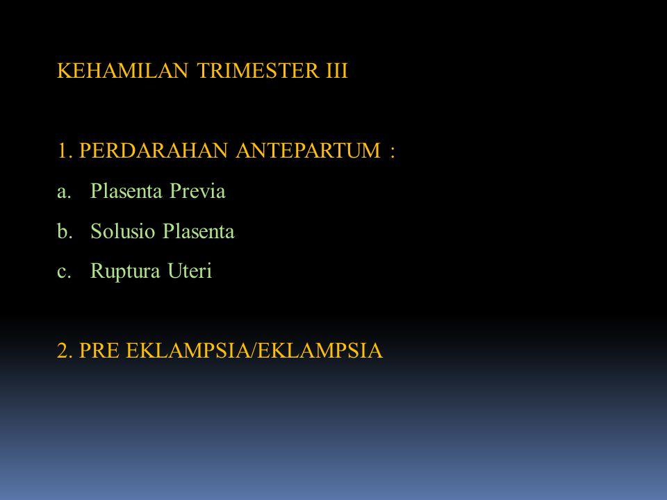 KEHAMILAN TRIMESTER III