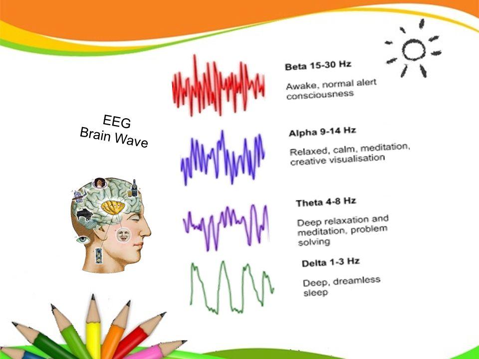 EEG Brain Wave
