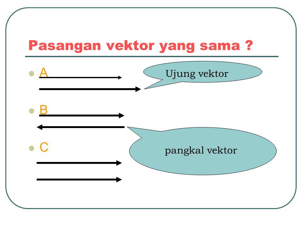 Pasangan vektor yang sama