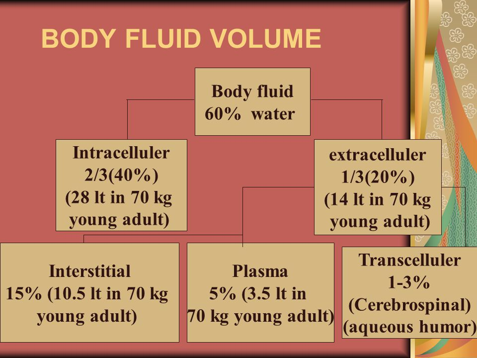 BODY FLUID VOLUME Body fluid 60% water Intracelluler 2/3(40%)