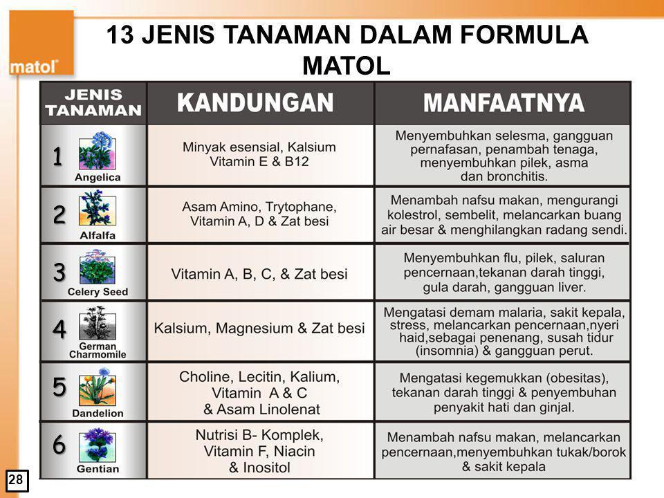 13 JENIS TANAMAN DALAM FORMULA MATOL