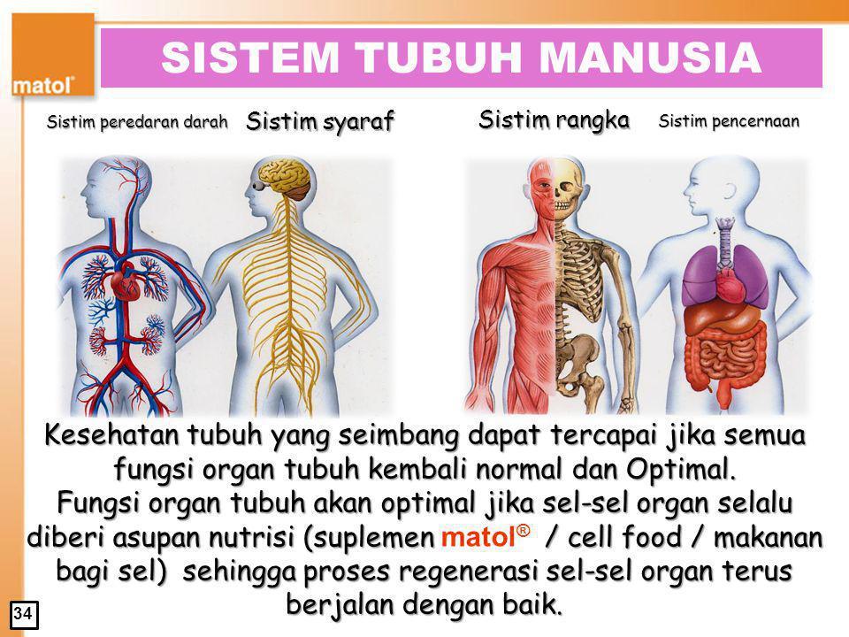 SISTEM TUBUH MANUSIA Sistim rangka. Sistim peredaran darah. Sistim syaraf. Sistim pencernaan.