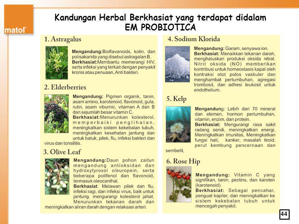 Kandungan Herbal Berkhasiat yang terdapat didalam