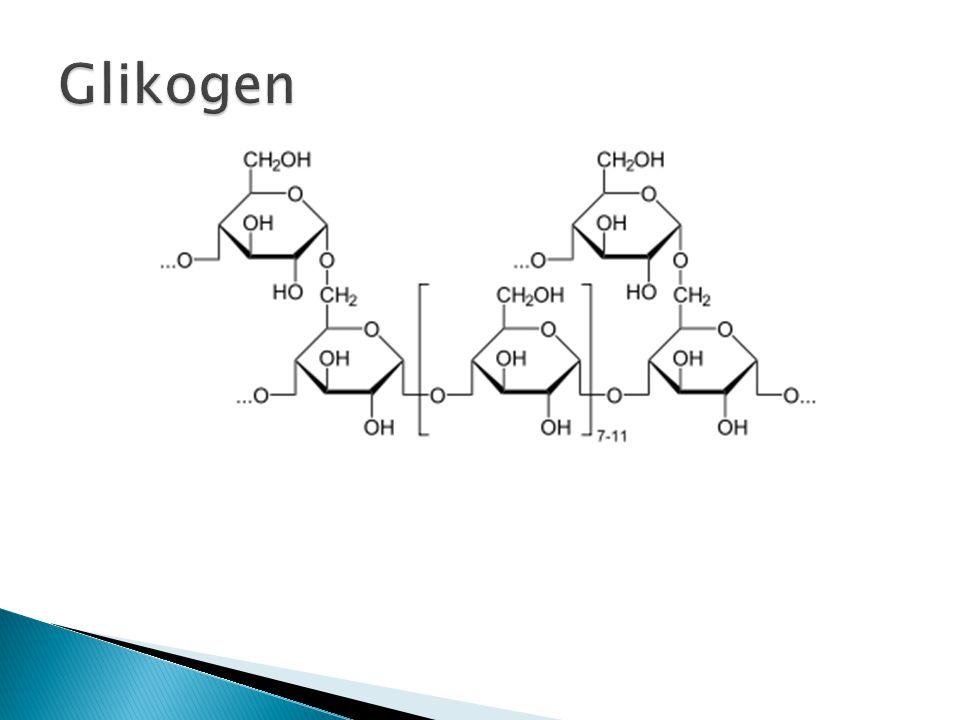Glikogen