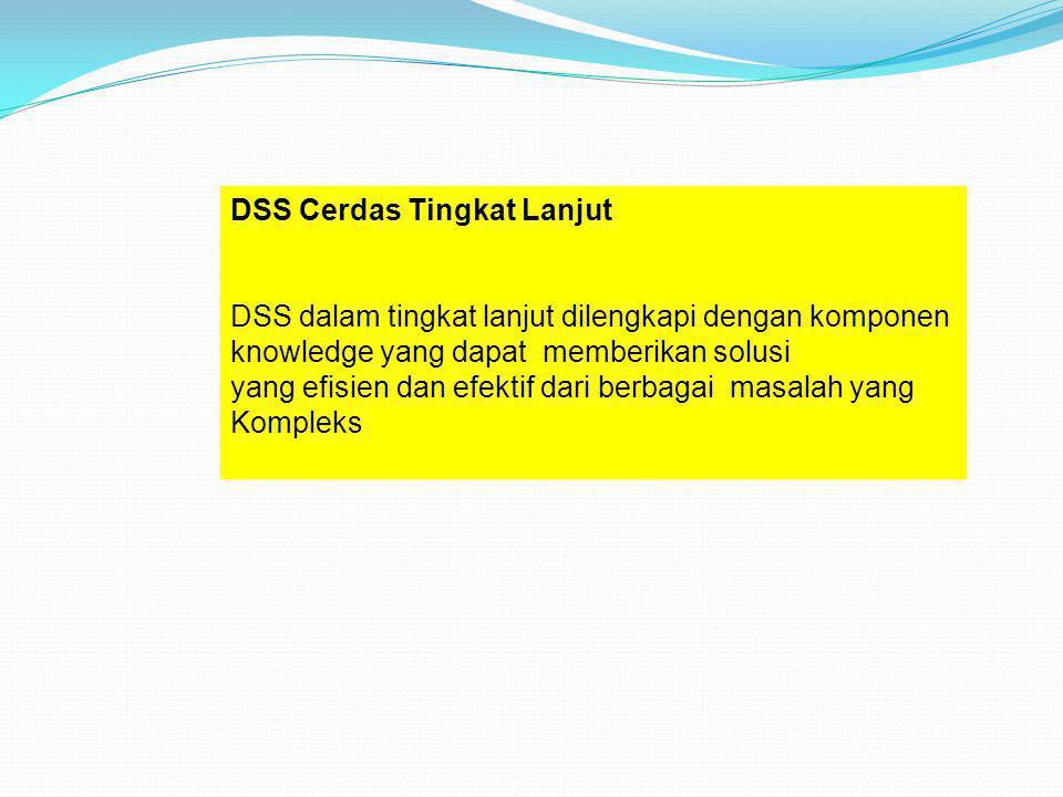 DSS Cerdas Tingkat Lanjut
