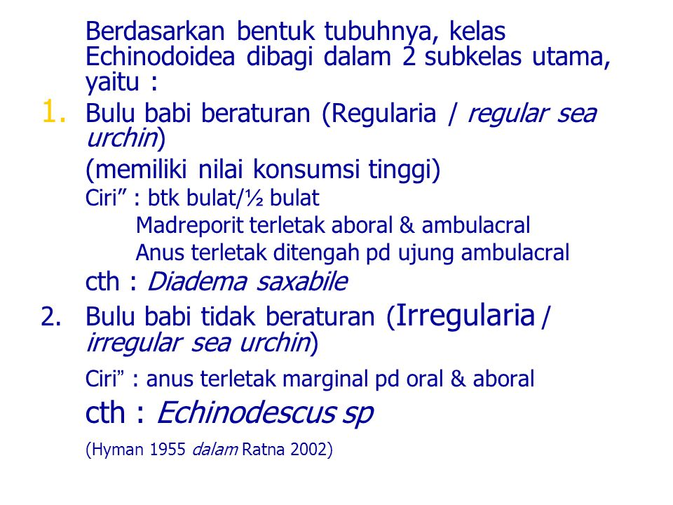 Ciri : anus terletak marginal pd oral & aboral cth : Echinodescus sp