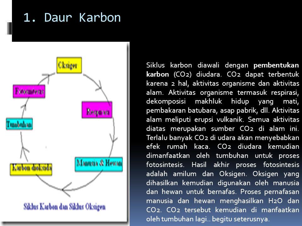 Siklus karbon diawali dengan pembentukan karbon (CO2) diudara