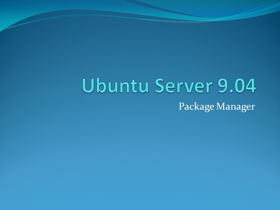 Ubuntu Server 9.04 Package Manager