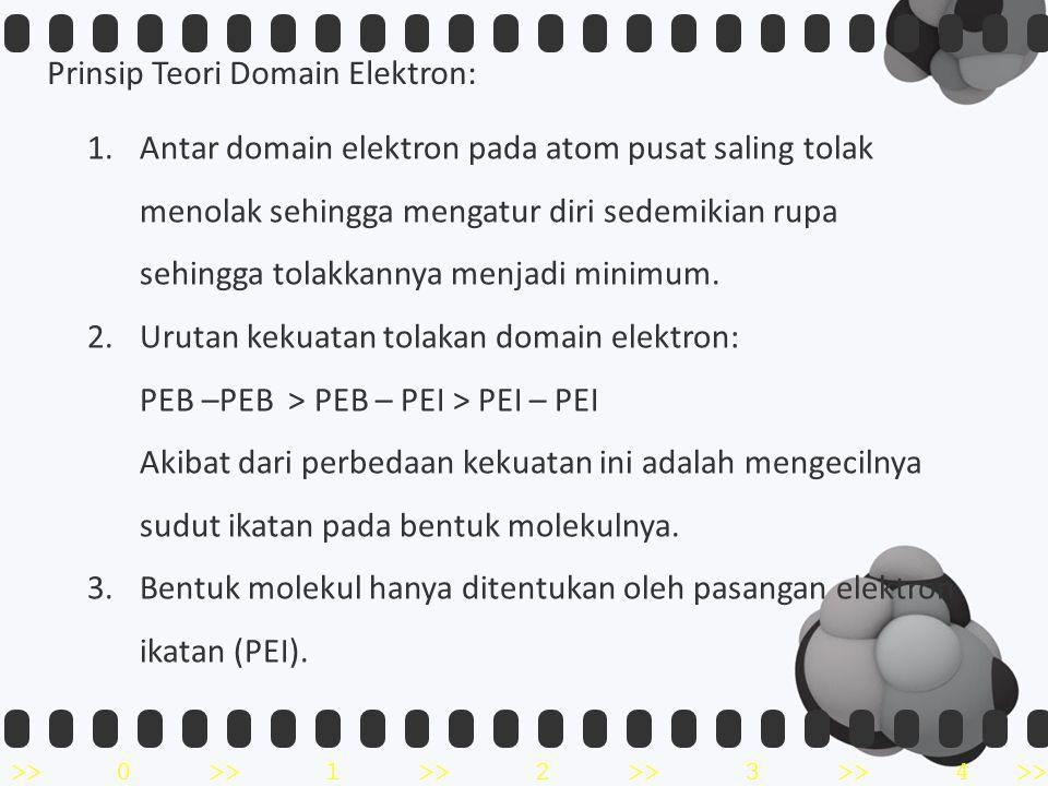 Prinsip Teori Domain Elektron: