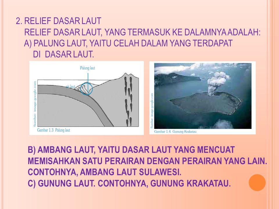 2. RELIEF DASAR LAUT RELIEF DASAR LAUT, YANG TERMASUK KE DALAMNYA ADALAH: A) PALUNG LAUT, YAITU CELAH DALAM YANG TERDAPAT DI DASAR LAUT.