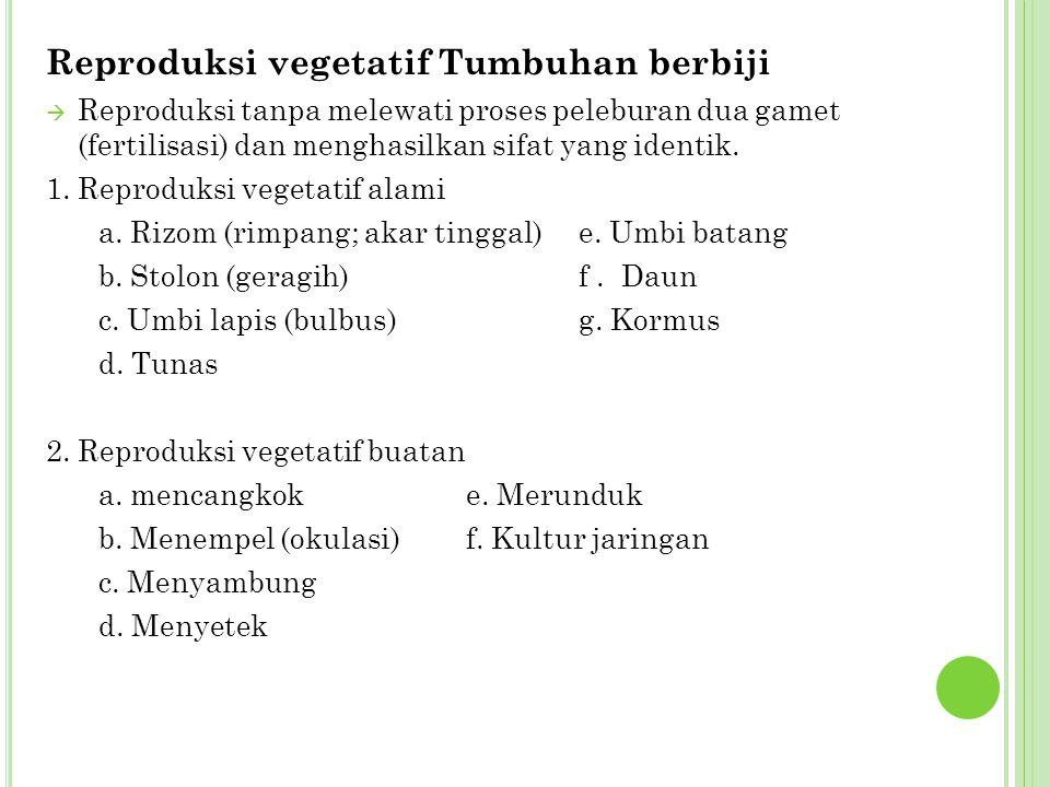 Reproduksi vegetatif Tumbuhan berbiji