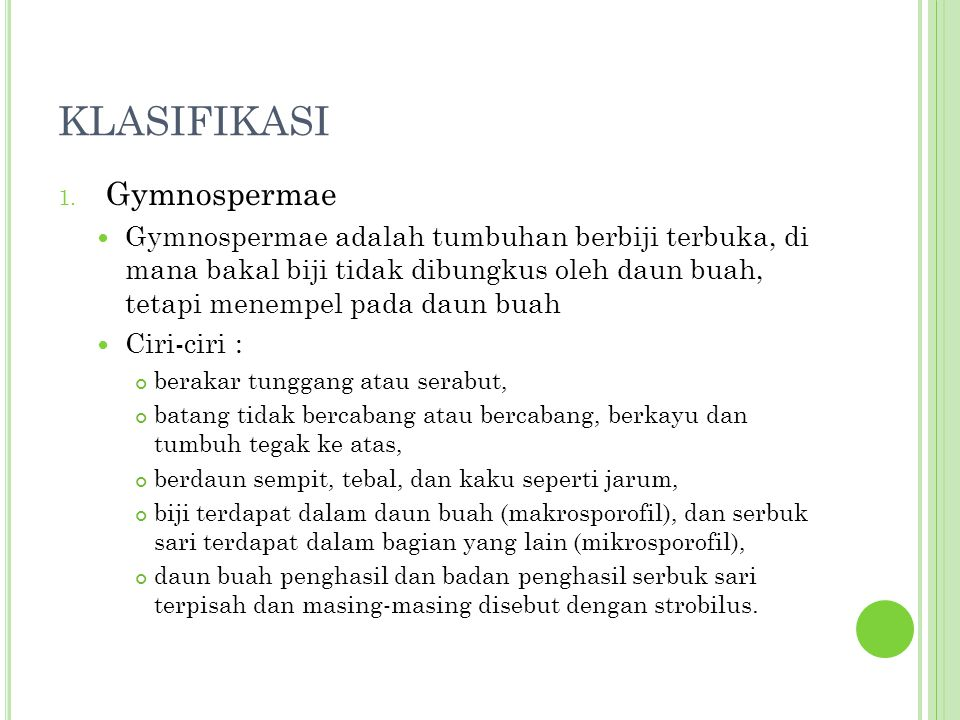 KLASIFIKASI Gymnospermae