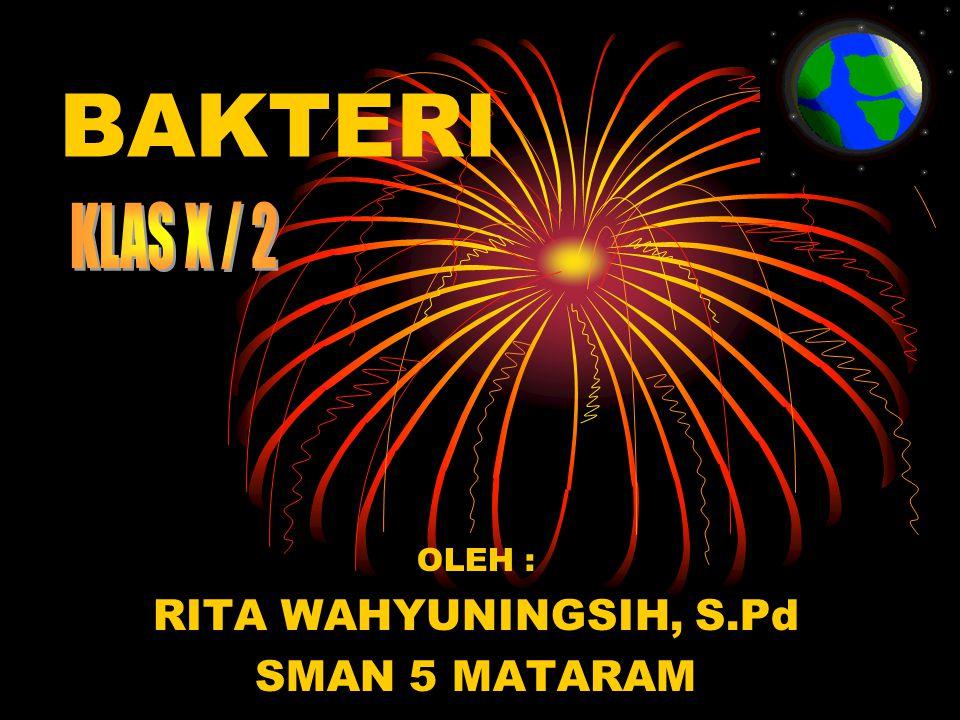 OLEH : RITA WAHYUNINGSIH, S.Pd SMAN 5 MATARAM