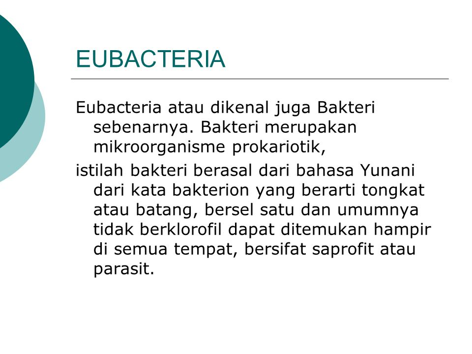 EUBACTERIA Eubacteria atau dikenal juga Bakteri sebenarnya. Bakteri merupakan mikroorganisme prokariotik,