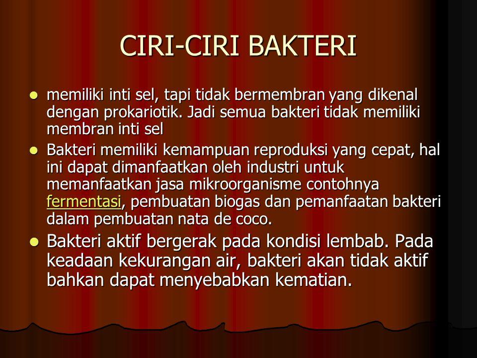CIRI-CIRI BAKTERI memiliki inti sel, tapi tidak bermembran yang dikenal dengan prokariotik. Jadi semua bakteri tidak memiliki membran inti sel.