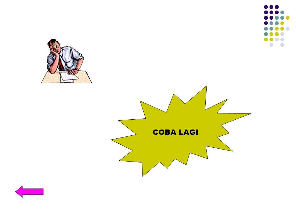 COBA LAGI