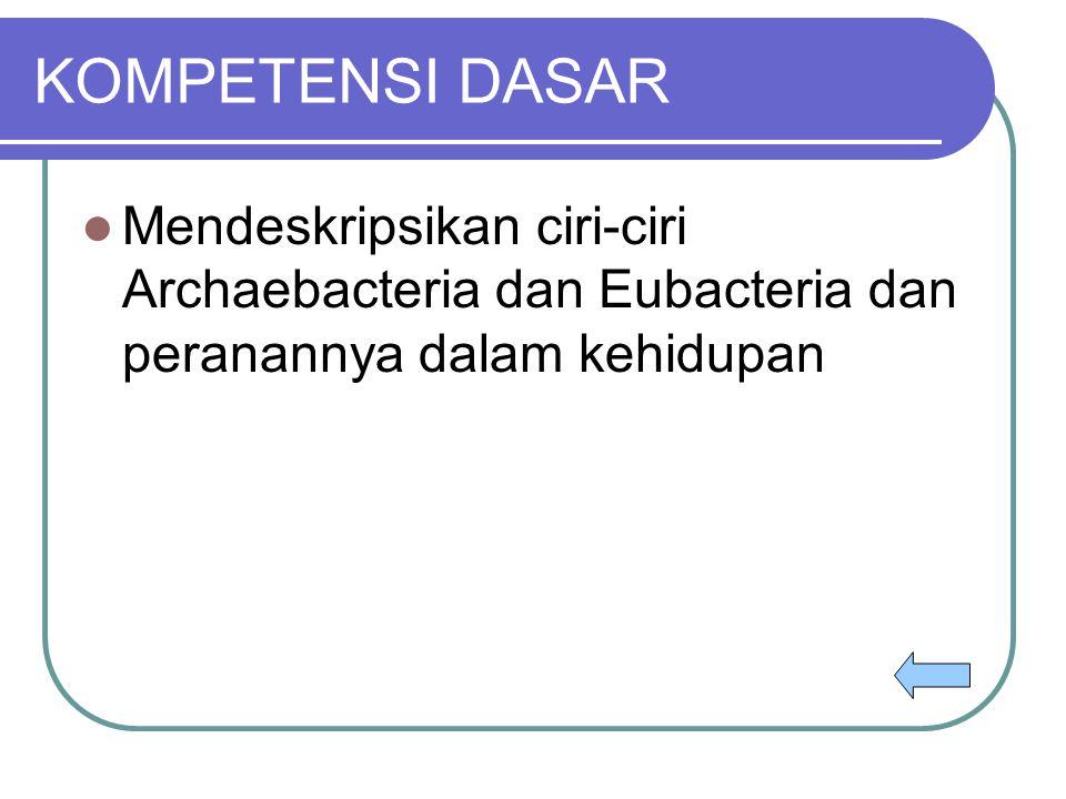 KOMPETENSI DASAR Mendeskripsikan ciri-ciri Archaebacteria dan Eubacteria dan peranannya dalam kehidupan.