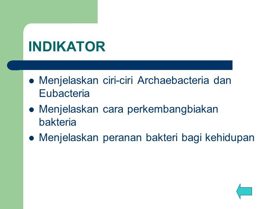 INDIKATOR Menjelaskan ciri-ciri Archaebacteria dan Eubacteria