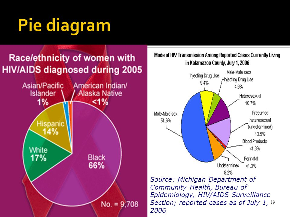 Pie diagram Source: Michigan Department of Community Health, Bureau of Epidemiology, HIV/AIDS Surveillance Section; reported cases as of July 1, 2006.