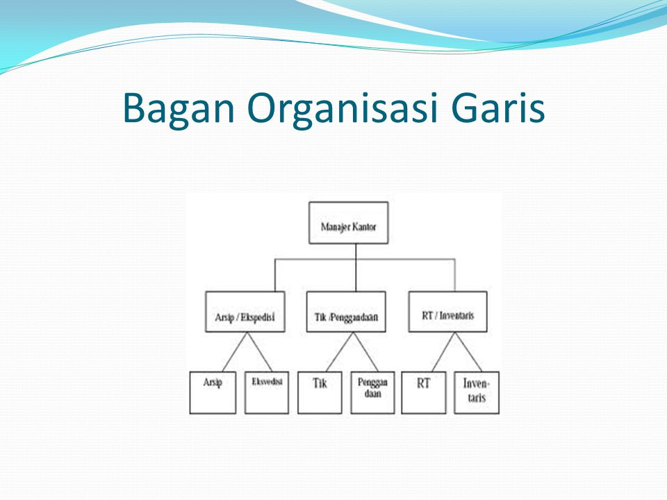 Bagan Organisasi Garis
