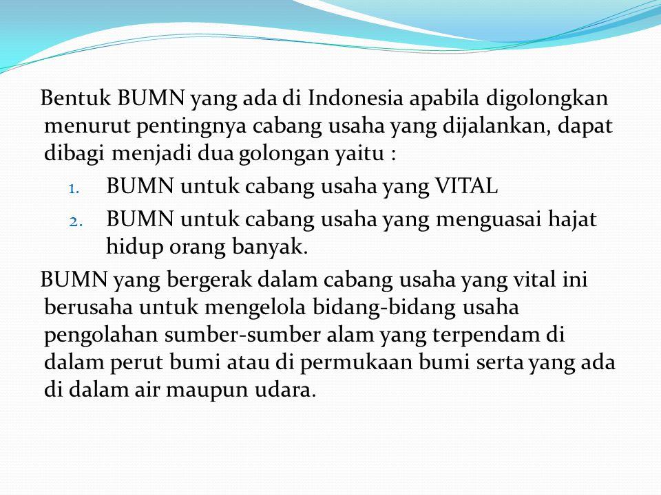 Bentuk BUMN yang ada di Indonesia apabila digolongkan menurut pentingnya cabang usaha yang dijalankan, dapat dibagi menjadi dua golongan yaitu :