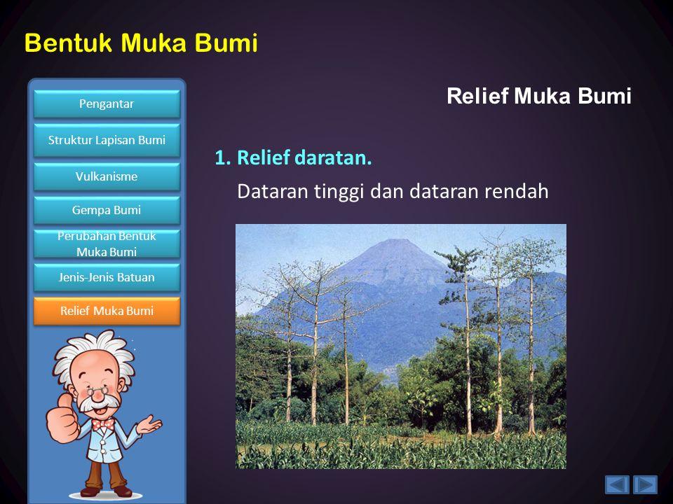 Relief Muka Bumi 1. Relief daratan. Dataran tinggi dan dataran rendah