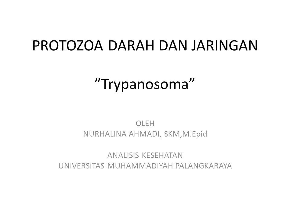PROTOZOA DARAH DAN JARINGAN Trypanosoma