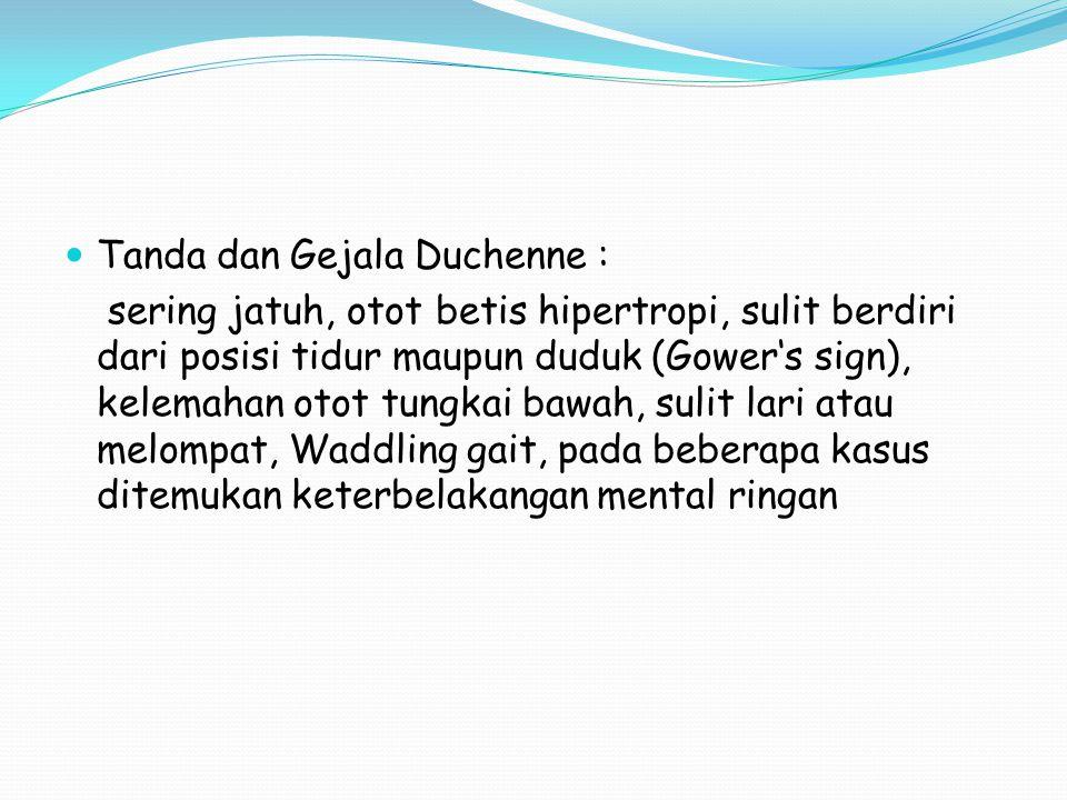 Tanda dan Gejala Duchenne :