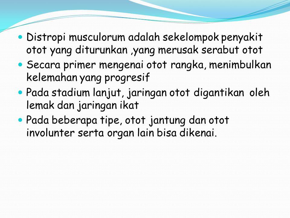 Distropi musculorum adalah sekelompok penyakit otot yang diturunkan ,yang merusak serabut otot