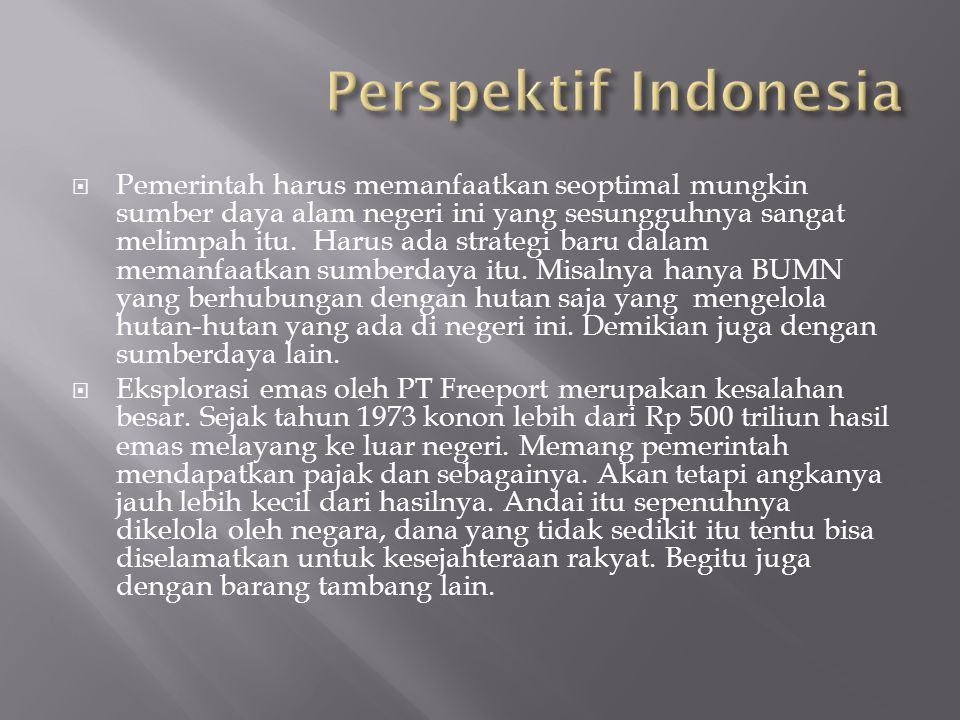 Perspektif Indonesia