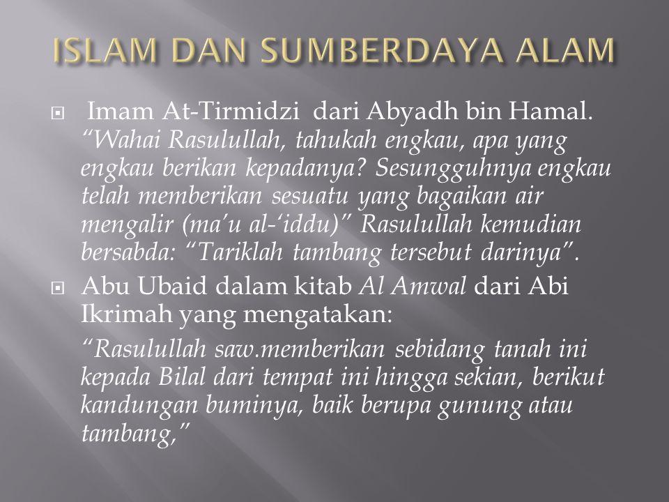 ISLAM DAN SUMBERDAYA ALAM
